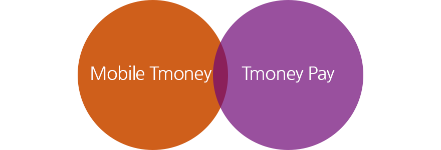 Mobile Tmoney, Tmoney Pay